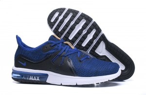 Nike Air Max  Sequent (908993-010)