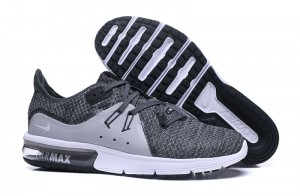 Nike Air Max  Sequent (908993-004)