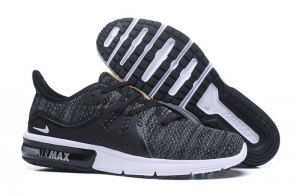 Nike Air Max  Sequent (908993-007)